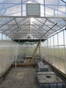greenhouse kit construction