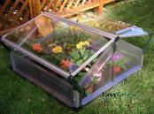 double-coldframe-open.jpg