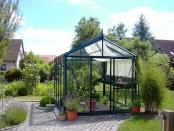 Victorian vi34 Glass Greenhouse